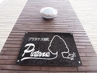 P1014938.JPG