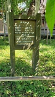 宝光寺 (4).jpg