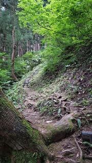 松苧神社 (3).jpg