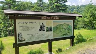 鮫ヶ尾城 (1).jpg