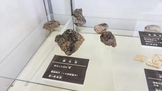 鮫ヶ尾城 (2).jpg